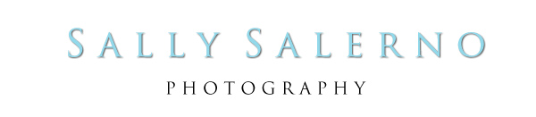 Raleigh Newborn Photographer | Sally Salerno Photography | Children | Families logo